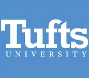 Tufts Essays